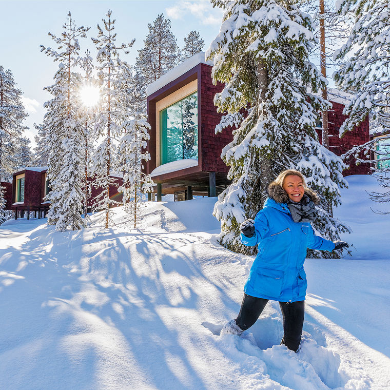 Arctic TreeHouse Hotel talvella
